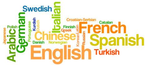 La barrera del idioma por Toni González